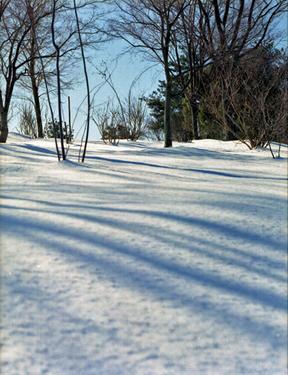 Snow_01_2