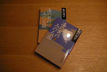 201101051080087