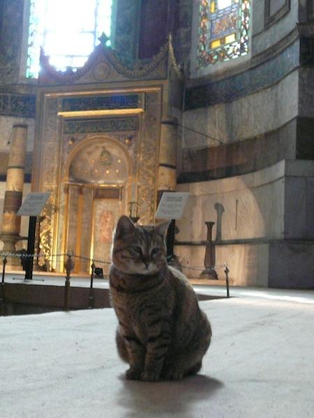 Istanbul-042_3h